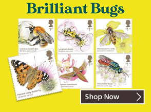 Brilliant Bugs - Our Essential Pollinators